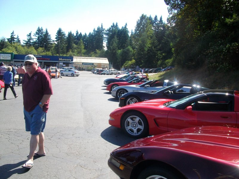Nice Vettes in a Row