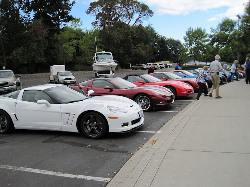 All the Corvettes in a row